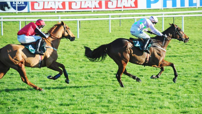 Drama at Leopardstown as Simply Ned wins Grade One chase in stewards' room