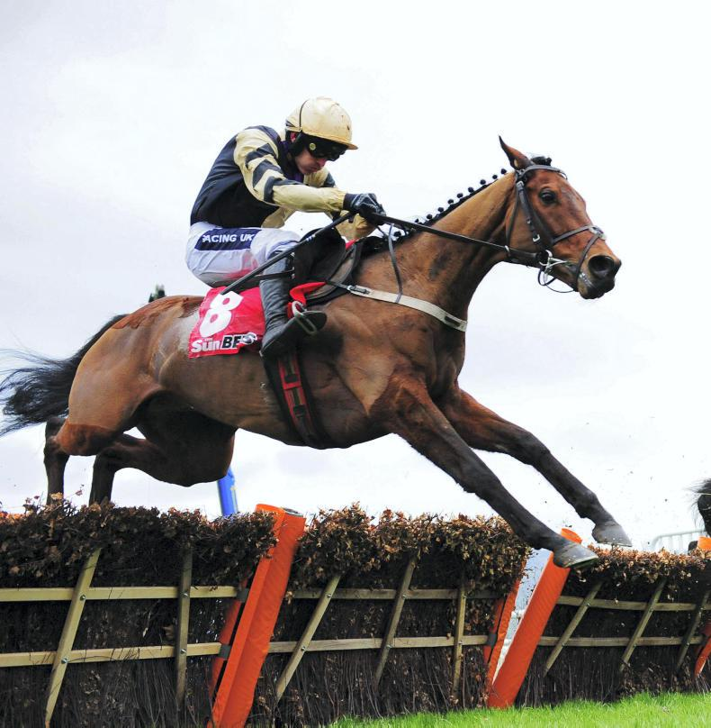 Death of gallant Nichols Canyon, the only horse to beat Faugheen