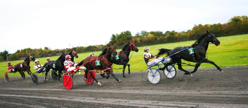 HARNESS RACING REVIEW OF THE YEAR: Indecon report points the way forward