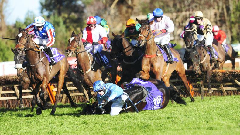 PHOTOS OF THE WEEK: Action and winners from the Christmas racing
