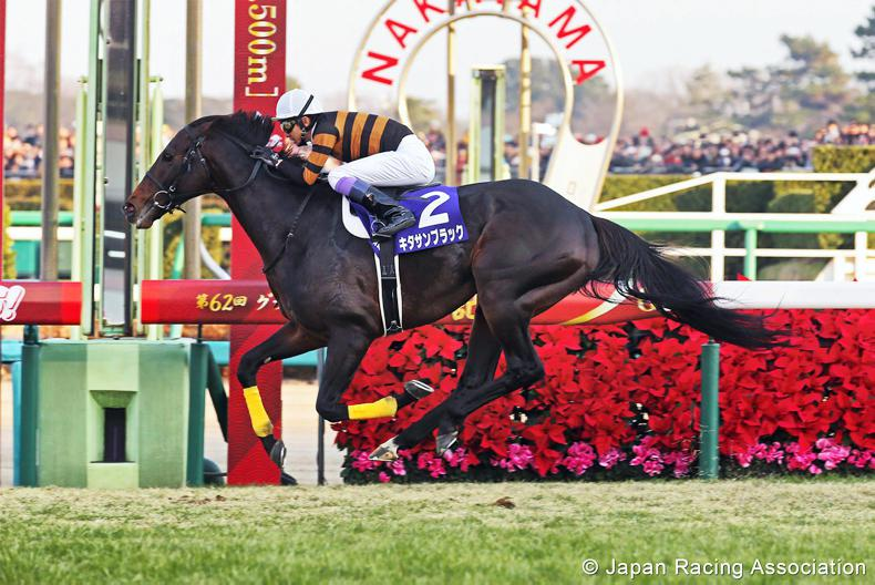 JAPAN: Kitasan Black joins list of all-time greats