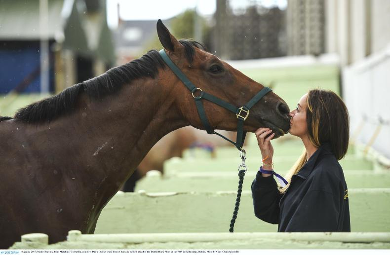 QUIZ: How well do you know the Irish equestrian world?