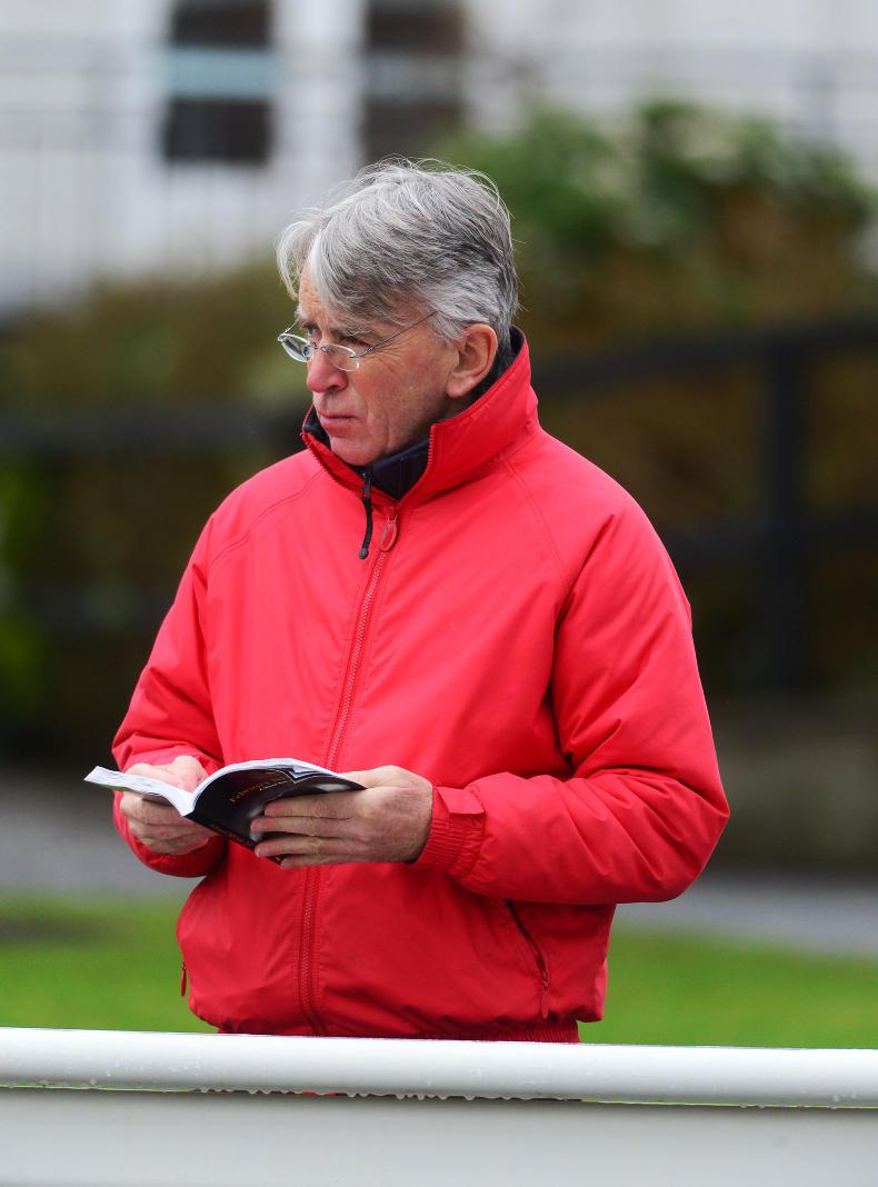 From Adare to success at Cheltenham