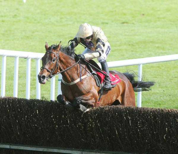 Felix Yonger is still good for the Arkle