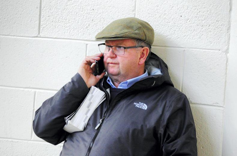Ferguson doubles up at Cheltenham