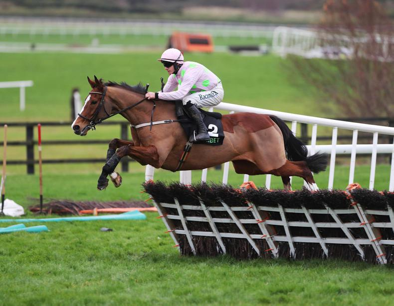 Mullins reports Irish Champion Hurdle is 'back on the radar' for Faugheen