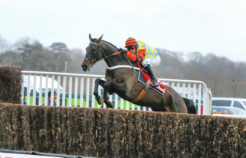 The countdown to the Cheltenham Festival begins