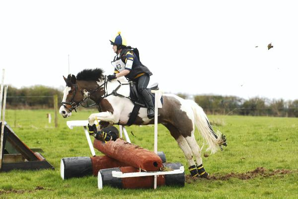 Earl's Well dominates hunter trials championships