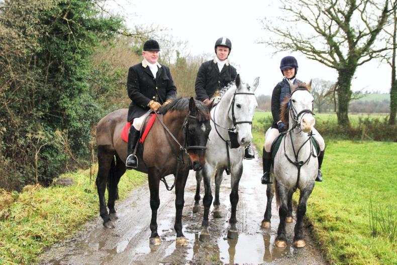 Irish Horse World Fixtures, January 13th 2018