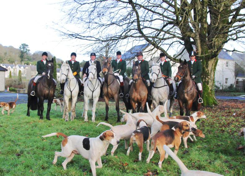 HUNTING:  In the shadow of Bunratty