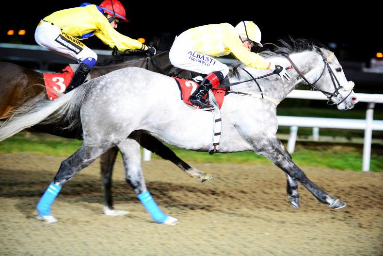 Captain Joy rolls back the years at Dundalk to book Lingfield ticket