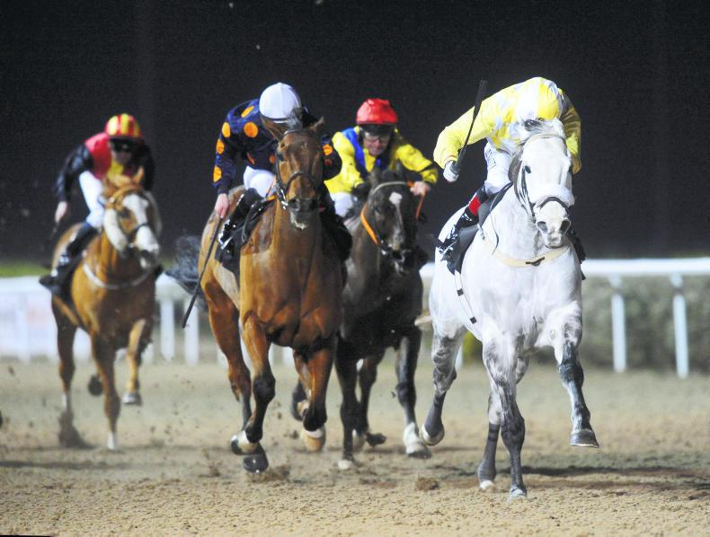 DUNDALK FRIDAY: Captain Joy back to his best
