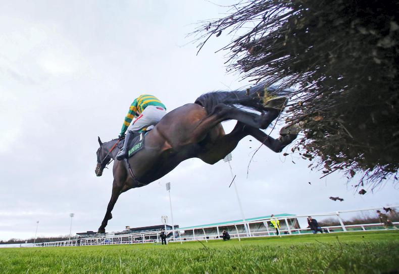 Inaugural Dublin Racing Festival attracts bumper entry