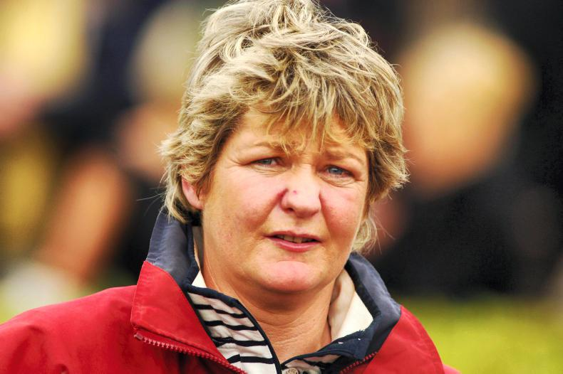 PONY TALES:  Entrants call-up for ladies race