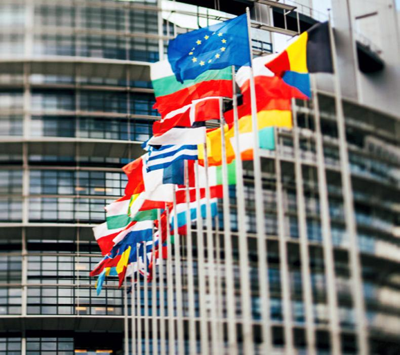 NEWS:  EU defends import control system