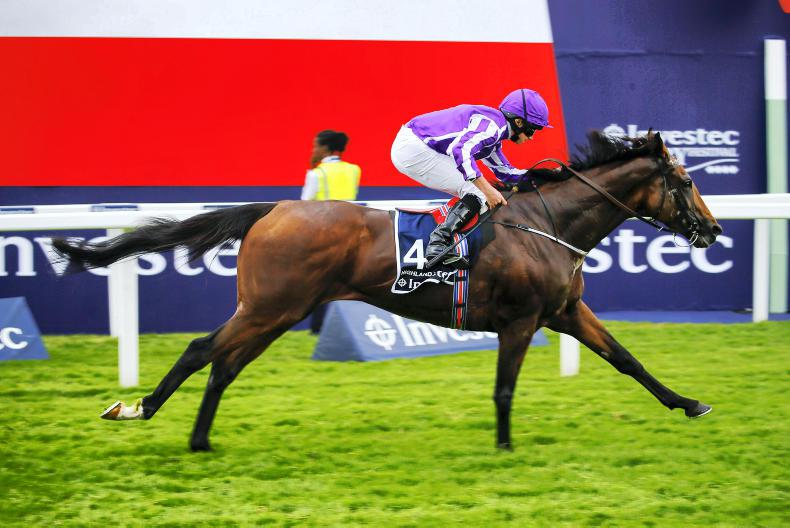 HIGHLAND REEL : Standing at Coolmore Stud