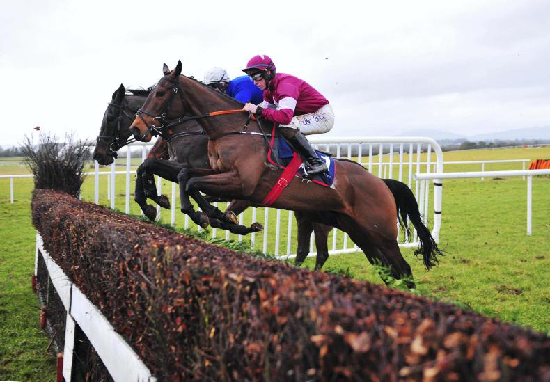 Record entry for the Chanelle Pharma Handicap Chase at Dublin Racing Festival
