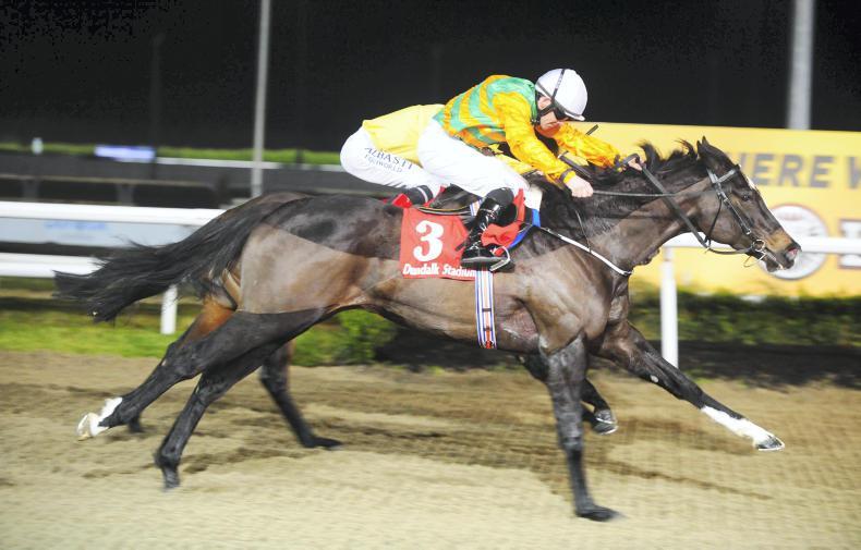 DUNDALK FRIDAY: Boragh Steps up to win