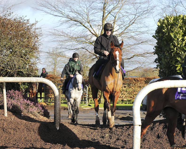 "DUBLIN RACING FESTIVAL:  ""I can't see it being anything but a success"