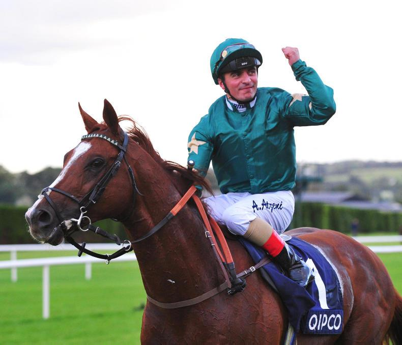 LWTRR: Ballydoyle bonanza on the home front
