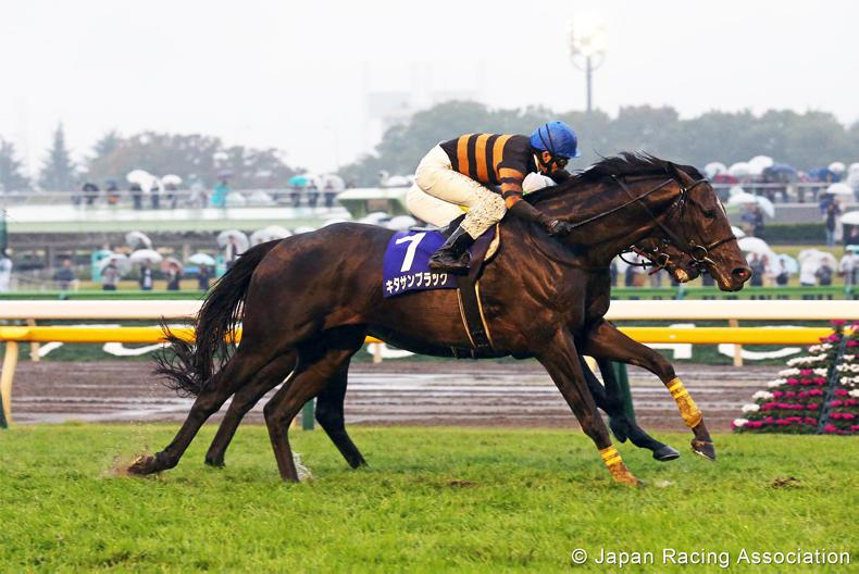 JAPAN:  Kitasan out on his own