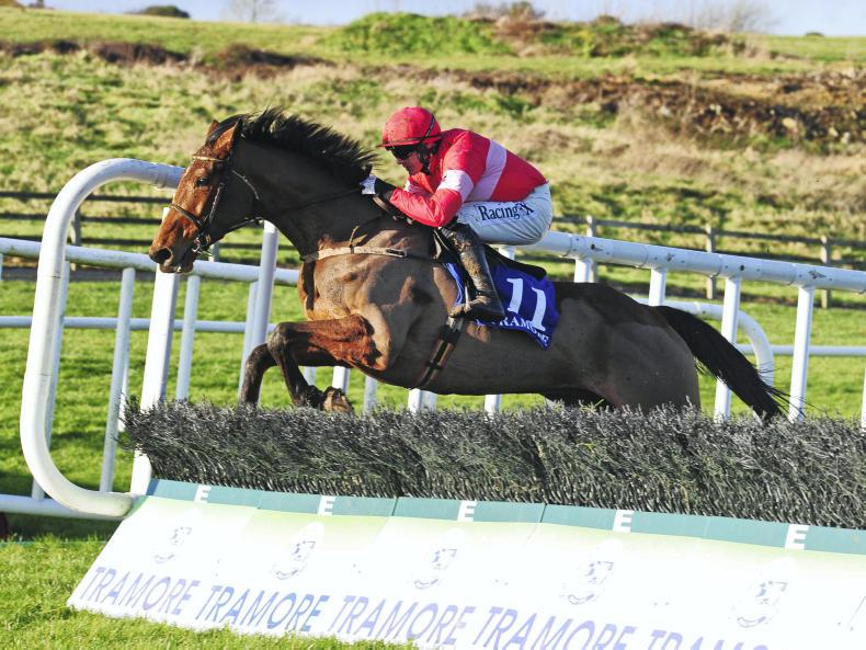 FAIRYHOUSE SATURDAY: Laurina another star from Closutton academy