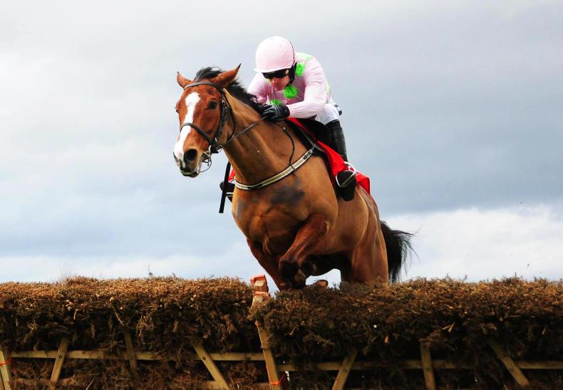 LEOPARDSTOWN SATURDAY: Fantastic Faugheen primed for glory
