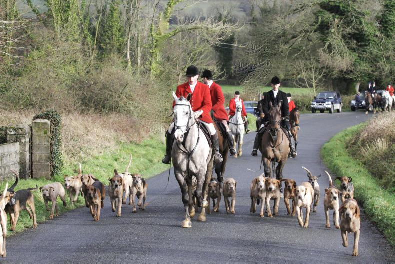 HUNTING:  Crossing Coolmore country