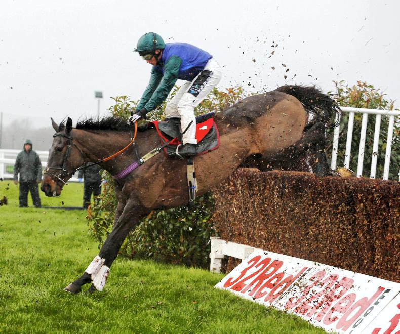 DONN MCCLEAN: Shaping up to be Topofthegame at Sandown