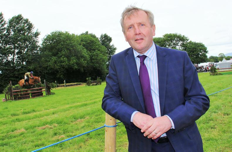 NEWS:  Creed – councils spend €7.5m on horses