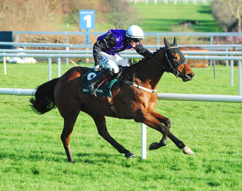 Mr Adjudicator lays down the law in Spring Juvenile Hurdle at Leopardstown