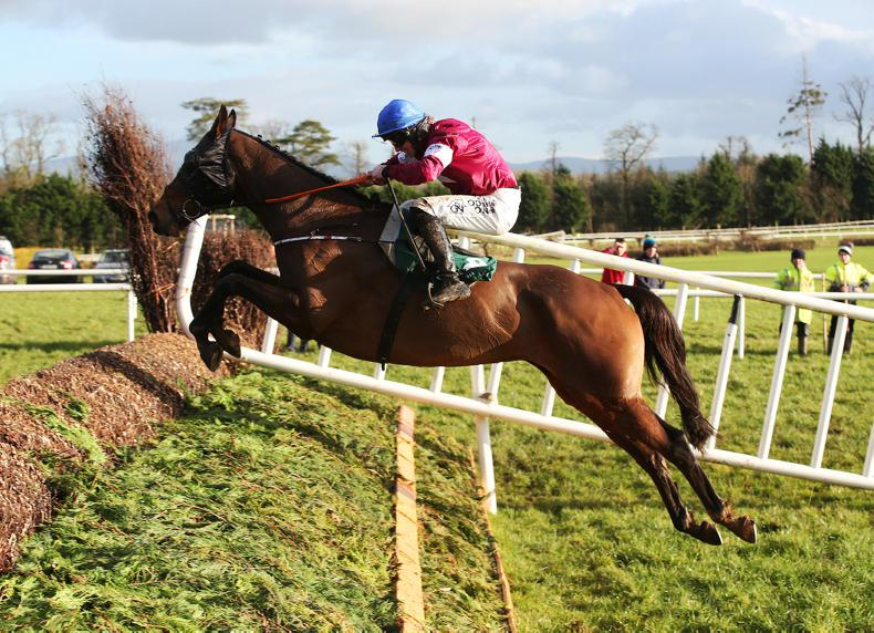 €100,000 BoyleSports National trial attracts excellent entries