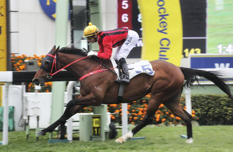 HONG KONG: Dinozzo provides more success for Swordlestown
