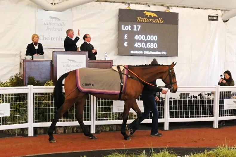 Immense trade at the Tattersalls Ireland Cheltenham February Sale