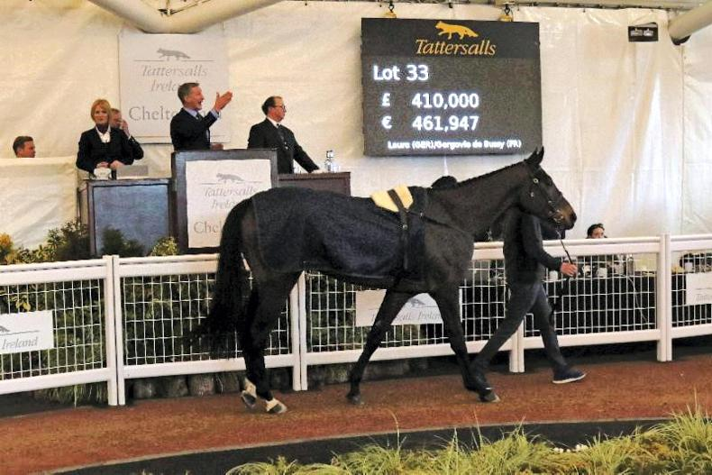 Stunning trade for Irish pointers to the future