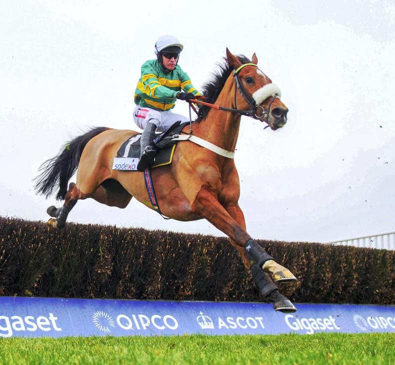 Coney Island primed for Ascot Chase showdown