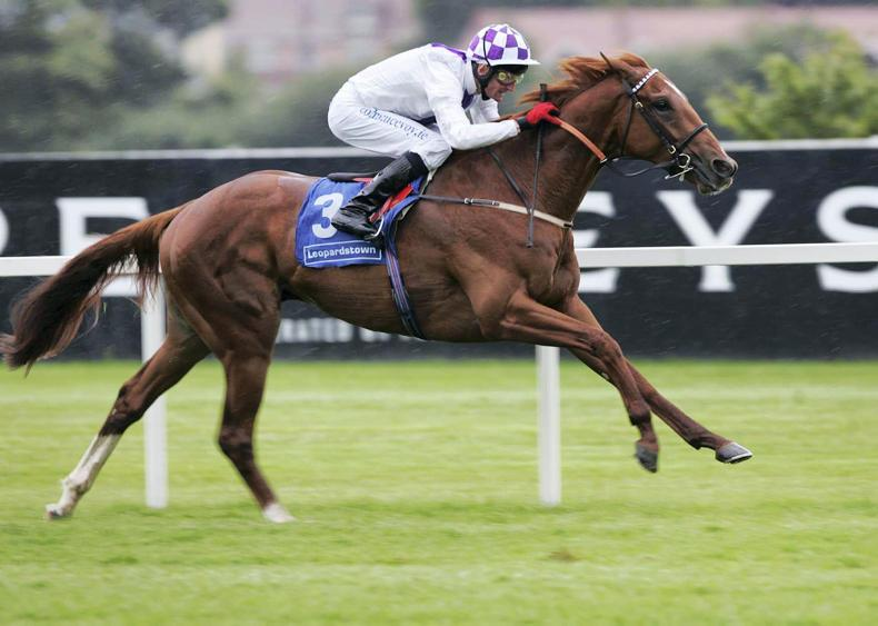 SIRE REVIEWS: New Approach : Standing at Dalham Hall Stud