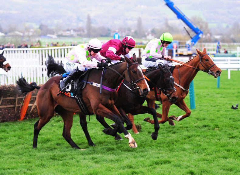 Cheltenham to stage first-ever mares only jump raceday at the April meeting