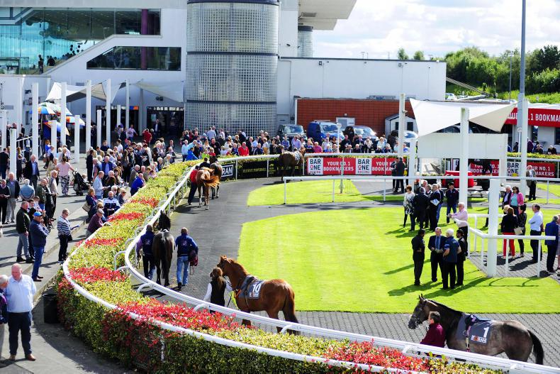What to look out for in a horse in the parade ring