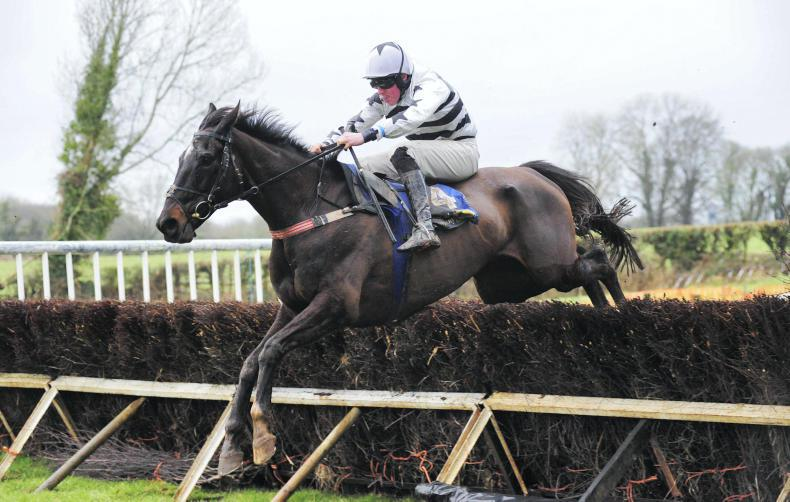 DUHALLOW FOXHOUNDS - KILDORRERY SUNDAY: Minella on the march