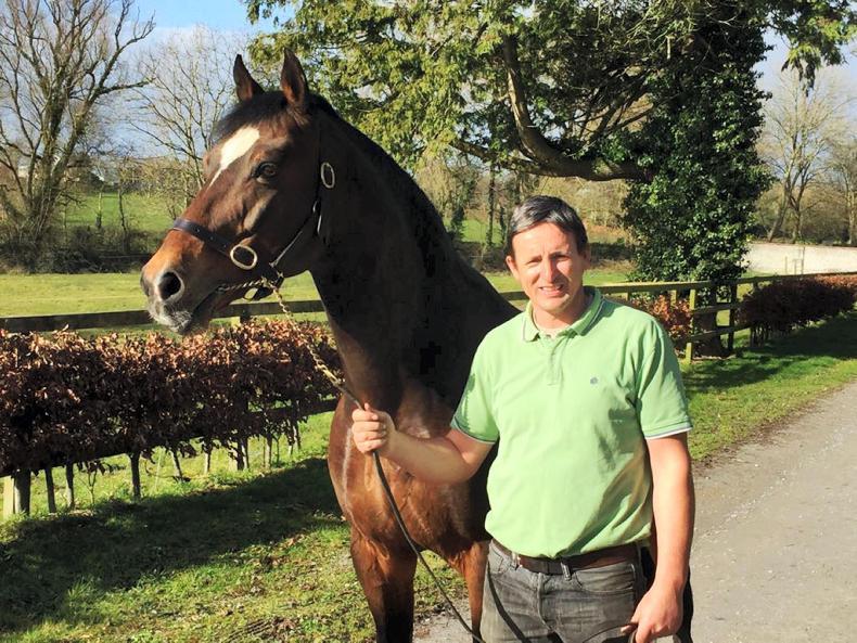 PONY TALES:  Kennedy clan hosting Stallion Open Day