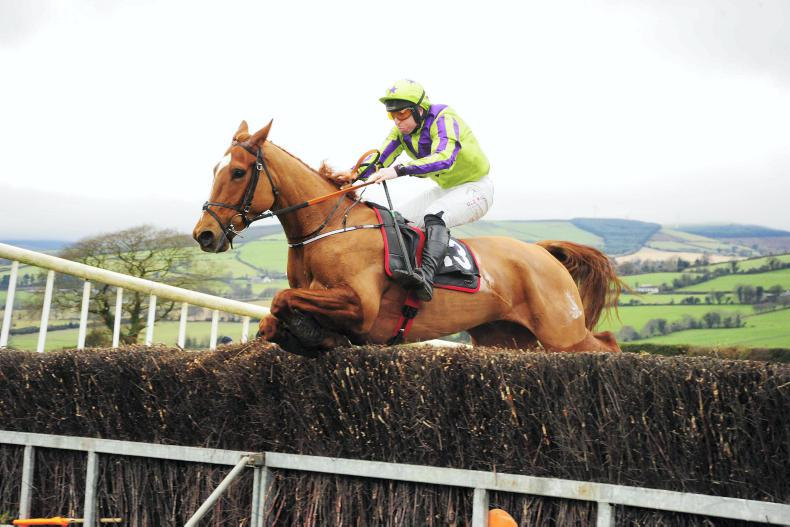 MARGIE MCLOONE: Tinahely and Bandon all set to go