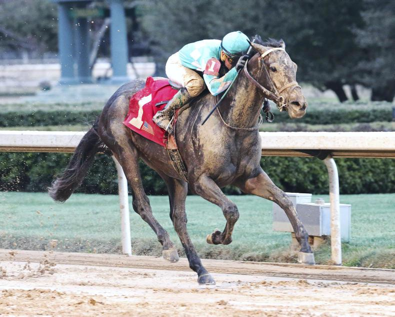 AMERICA: Jack jumps back on Derby trail