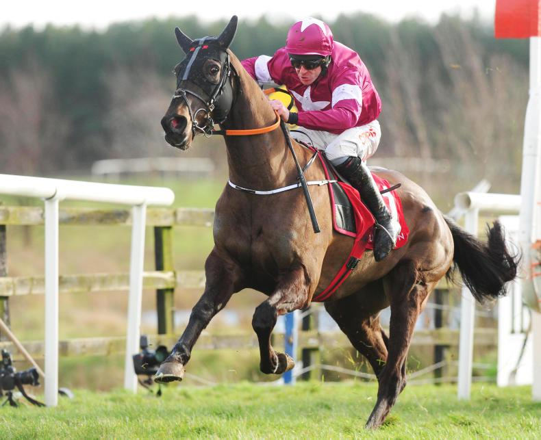 Cheltenham fever to hit Naas this weekend