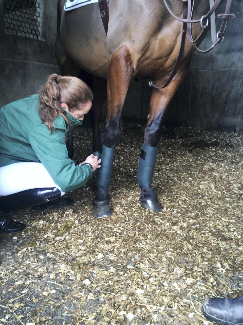 HORSE SENSE HOOFCARE ADVERTORIAL: Put your best foot forward with Plusvital