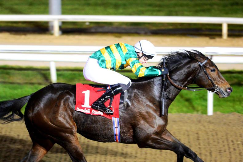 BRITISH PREVIEW: Look to the Skies for Winter winner