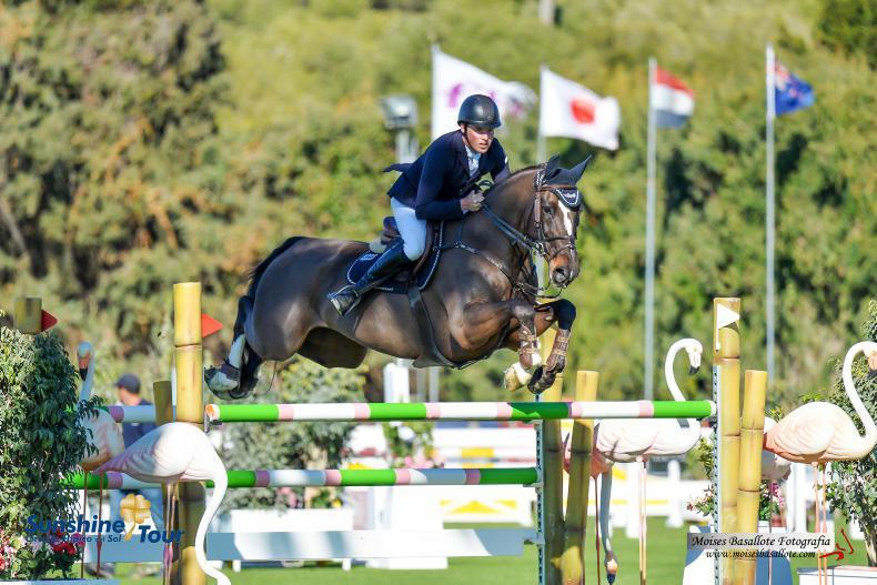 INTERNATIONAL: Allen brothers win in Spain