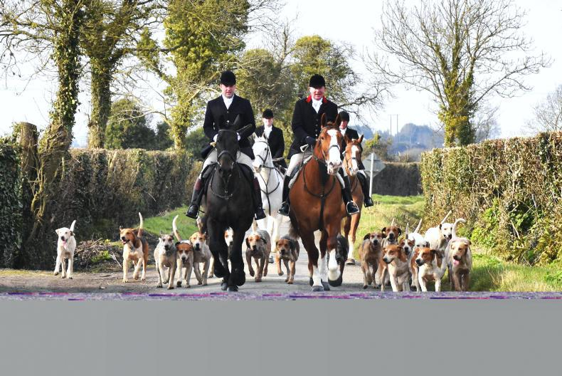 HUNTING PICTURE DESK:  Out & About