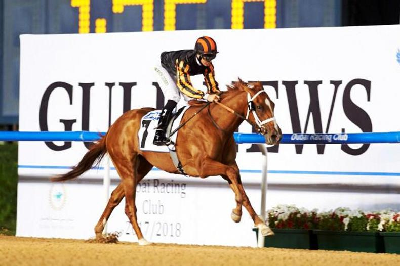 MEYDAN: Rayya shocks in UAE Oaks
