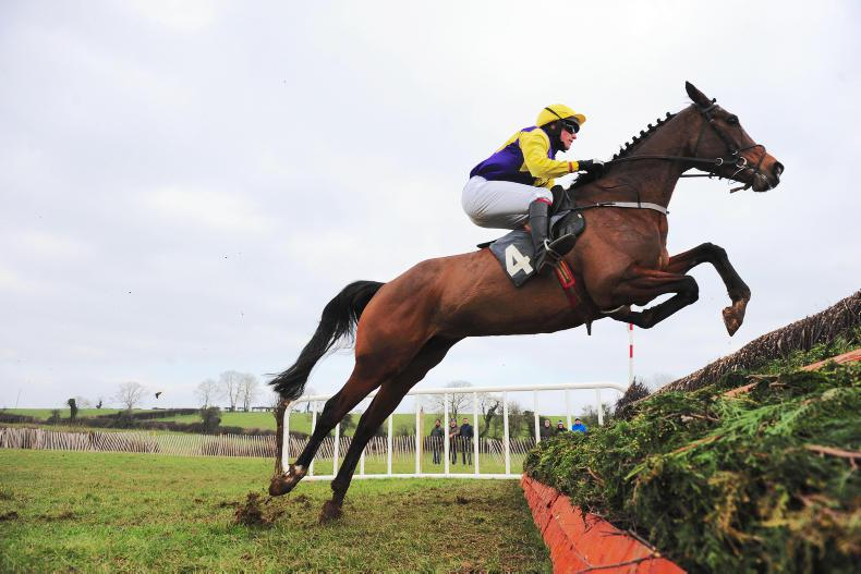 FARMACAFFLEY SATURDAY TYNAN AND ARMAGH FOXHOUNDS: Winning day for Watson